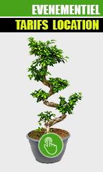 location de plantes événementiel