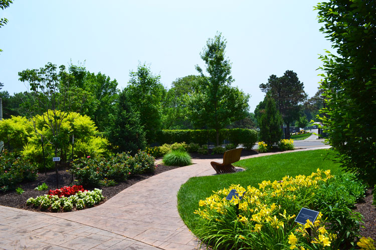 Location de plantes vertes paris louer plante bureaux for Location eclairage exterieur