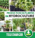 Brochure catalogue plantes