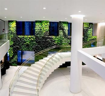 Tableau et mur végétal sur Paris