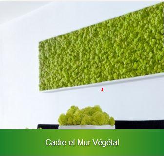 location de cadres végétaux gestivert