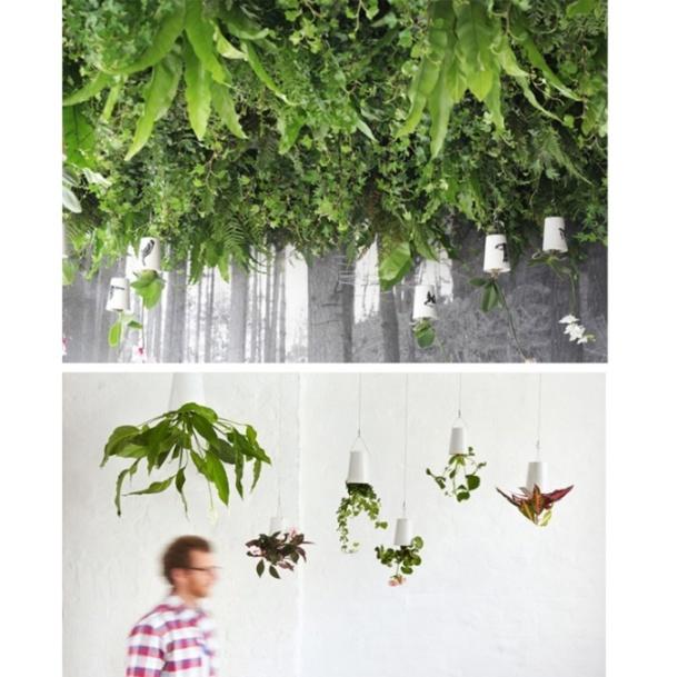 Les jardinières suspendues à l'envers